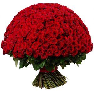 букет 301 красная роза фото