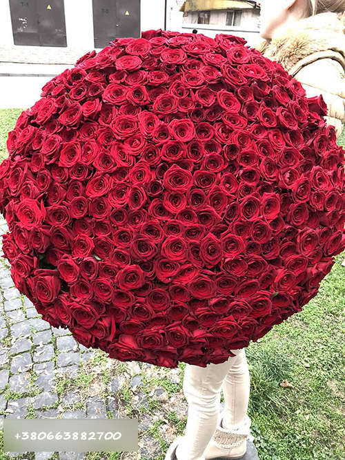 букет 301 роза в Ирпене